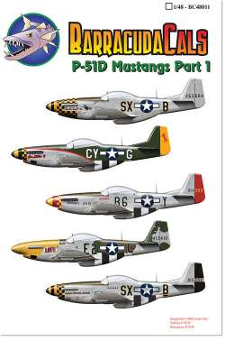 BarracudaCals 1/48 P-51D Mustangs Part 1